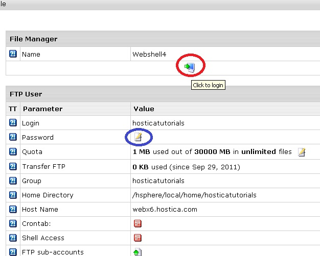 How to Use Webshell in Your Control Panel to Access Your